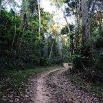 Trilha na Amazônia percorre caminhos onde viveu e morreu Chico Mendes