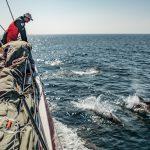 Nono dia à bordo da vela Dongfeng | Foto: Konrad Frost/Volvo Ocean Race