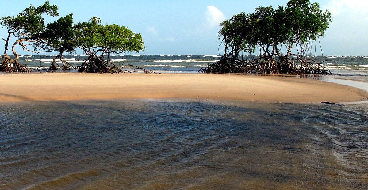 Foto: Wikepedia