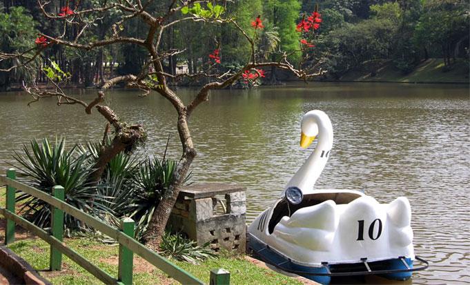 No parque ainda é possível fazer passeios de pedalinho por um valor acessível/ Foto: Reprodução Facebook