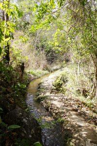 Caminho para Cachoeira das Andorinhas. Foto: arquivo pessoal.