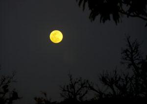 Super Lua no Morro de São Francisco. Foto: arquivo pessoal.