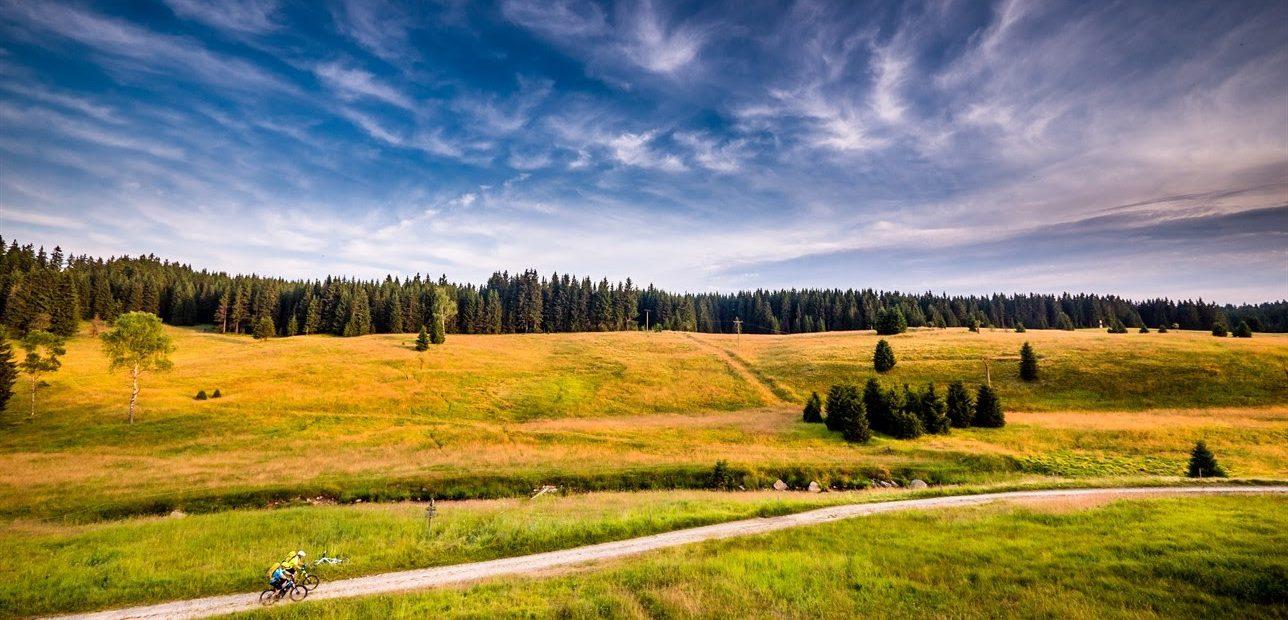 Três destinos naturais para receber a primavera na República Tcheca
